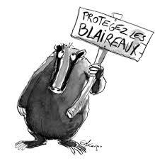 Blaireau