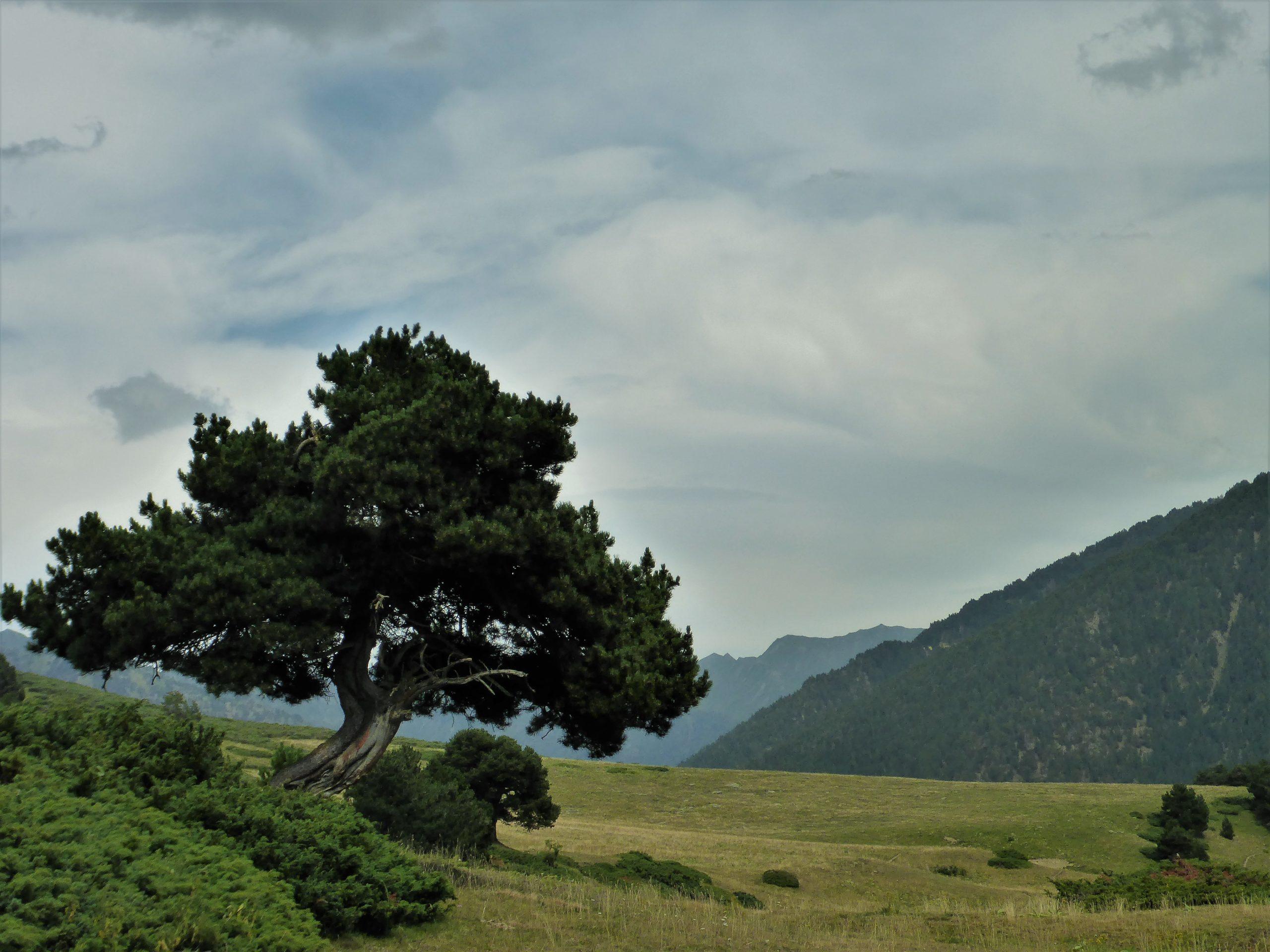 rando Ariège sauvage