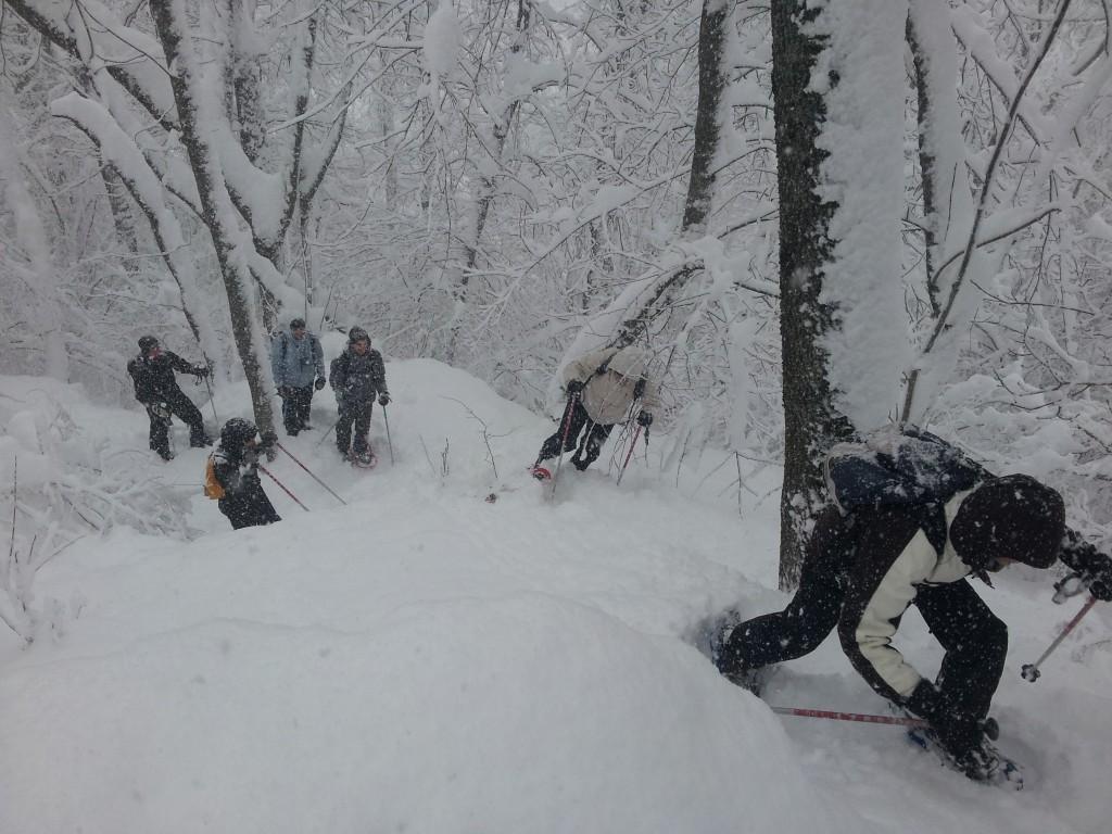 C'est sympa une sortie sous la neige!